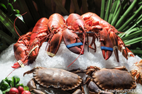 Hummer und Krabben auf Eis