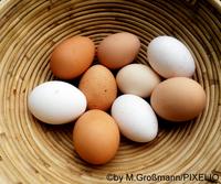 Braune und weiße Eier in einem Weidekorb